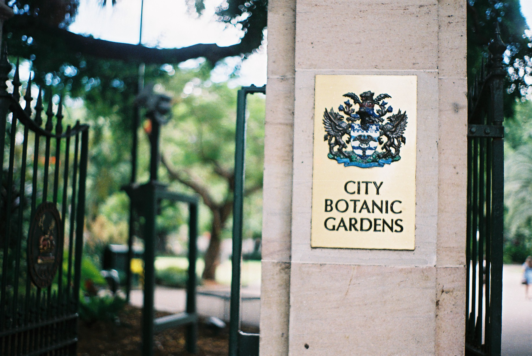Brisbane City Botanic Gardens 35mm Film Travel Photographer