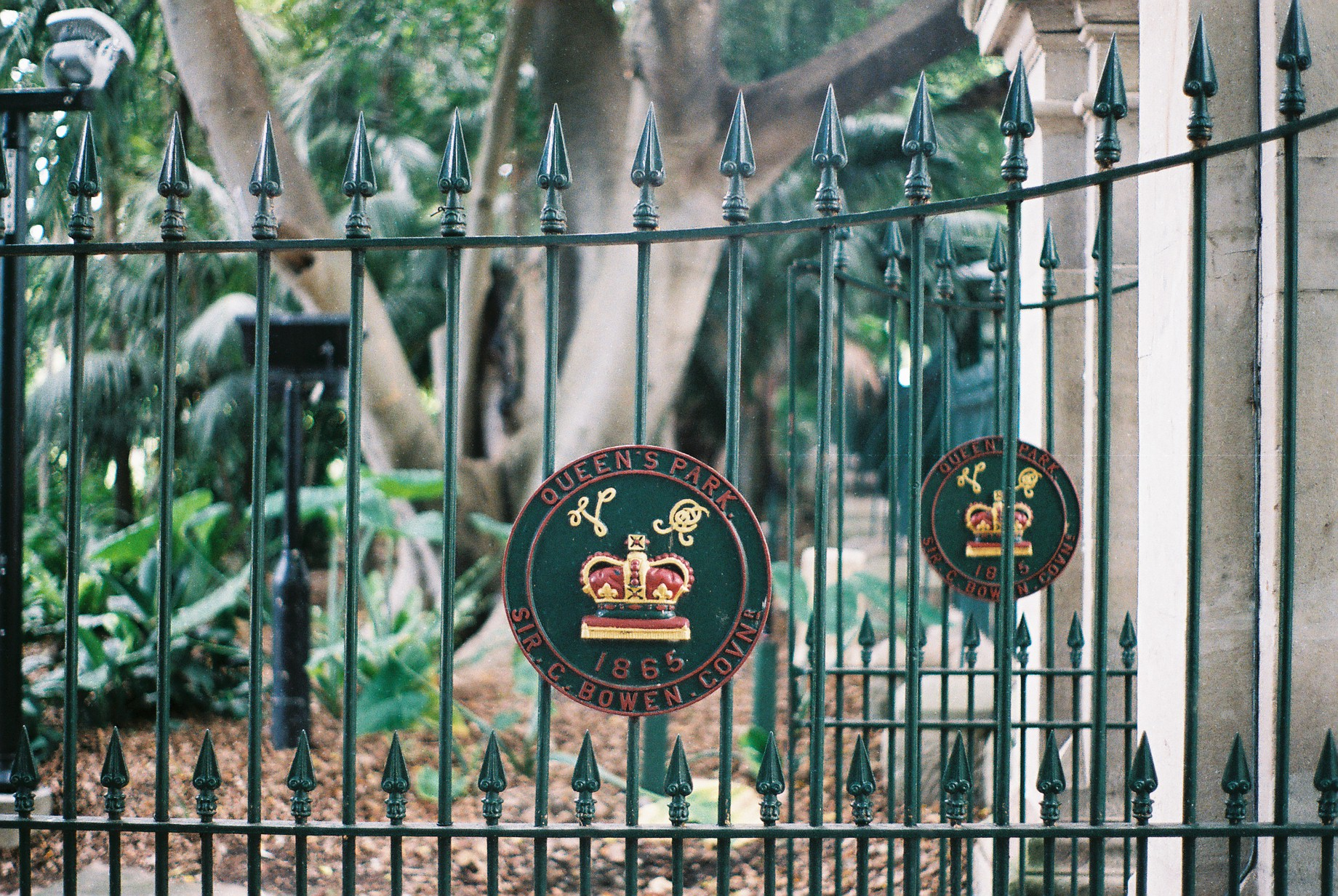 Brisbane Botanic Gardens 35mm Film Travel Photographer