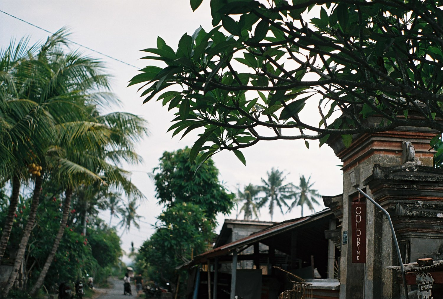 Cold Drink Lodtunduh Ubud Bali Analogue Travel Photographer