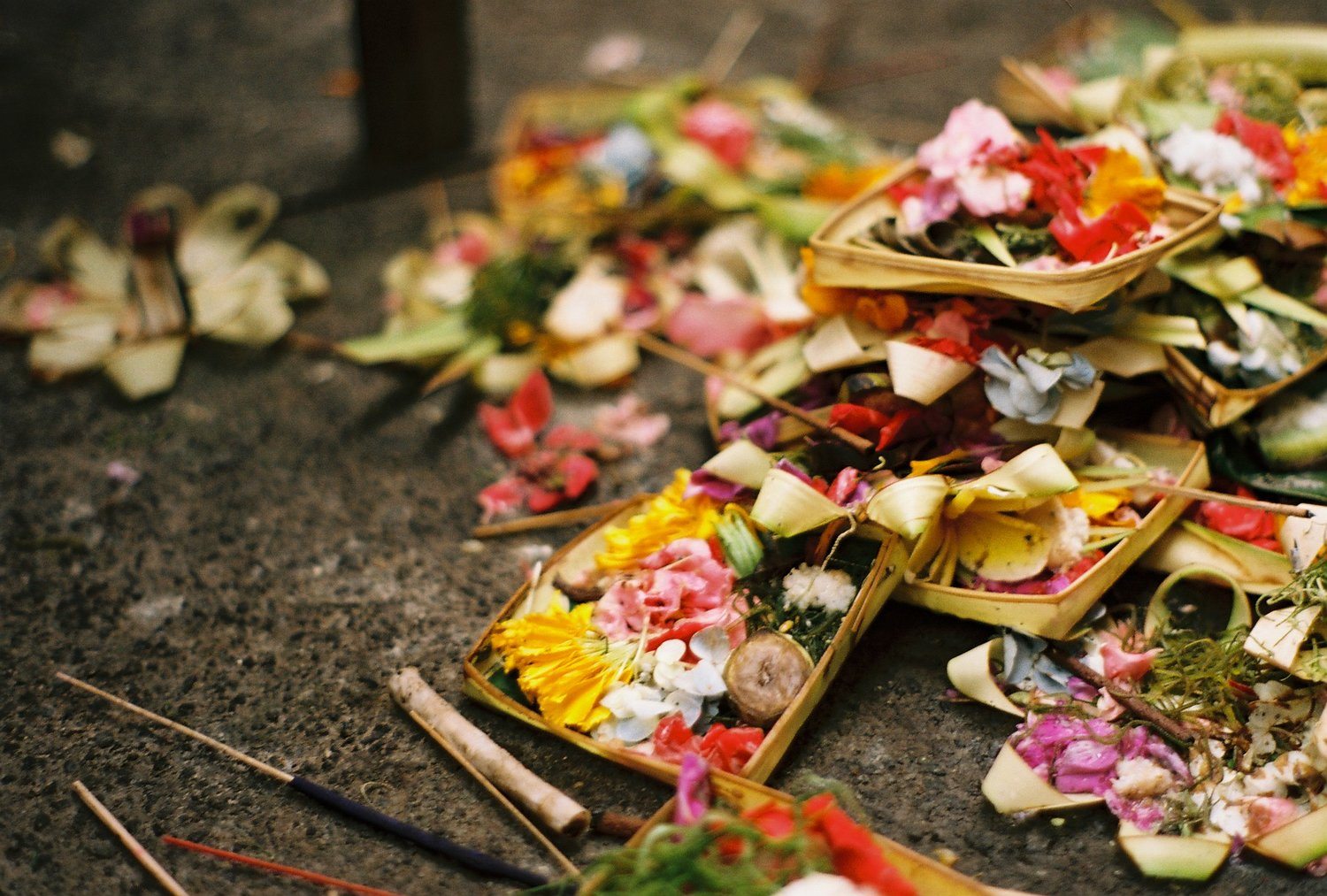 Offerings Ubud Bali Analogue Travel Photographer