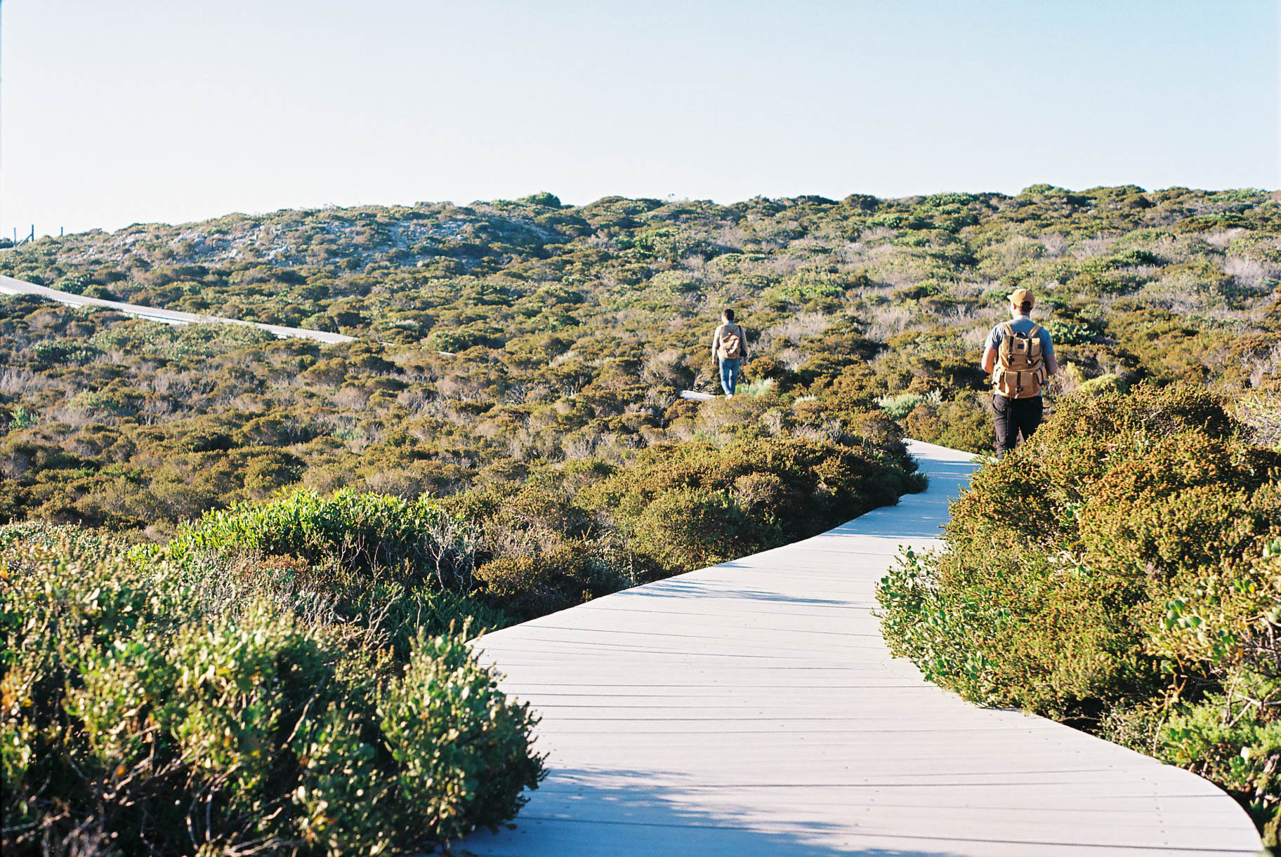 Kalbarri Coastal Walk Path Analogue Travel Photographer