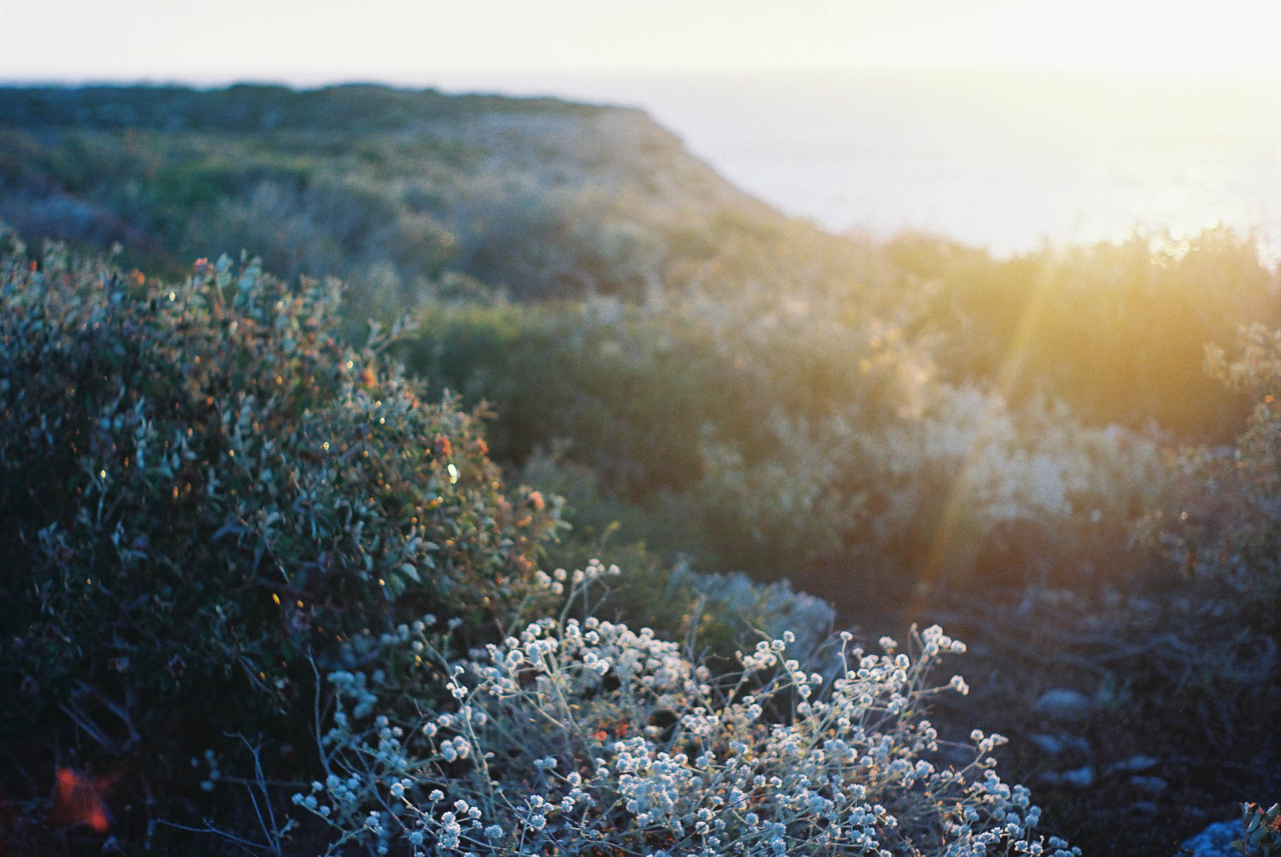 Kalbarri Coastal Walk Sunset Analogue Travel Photographer