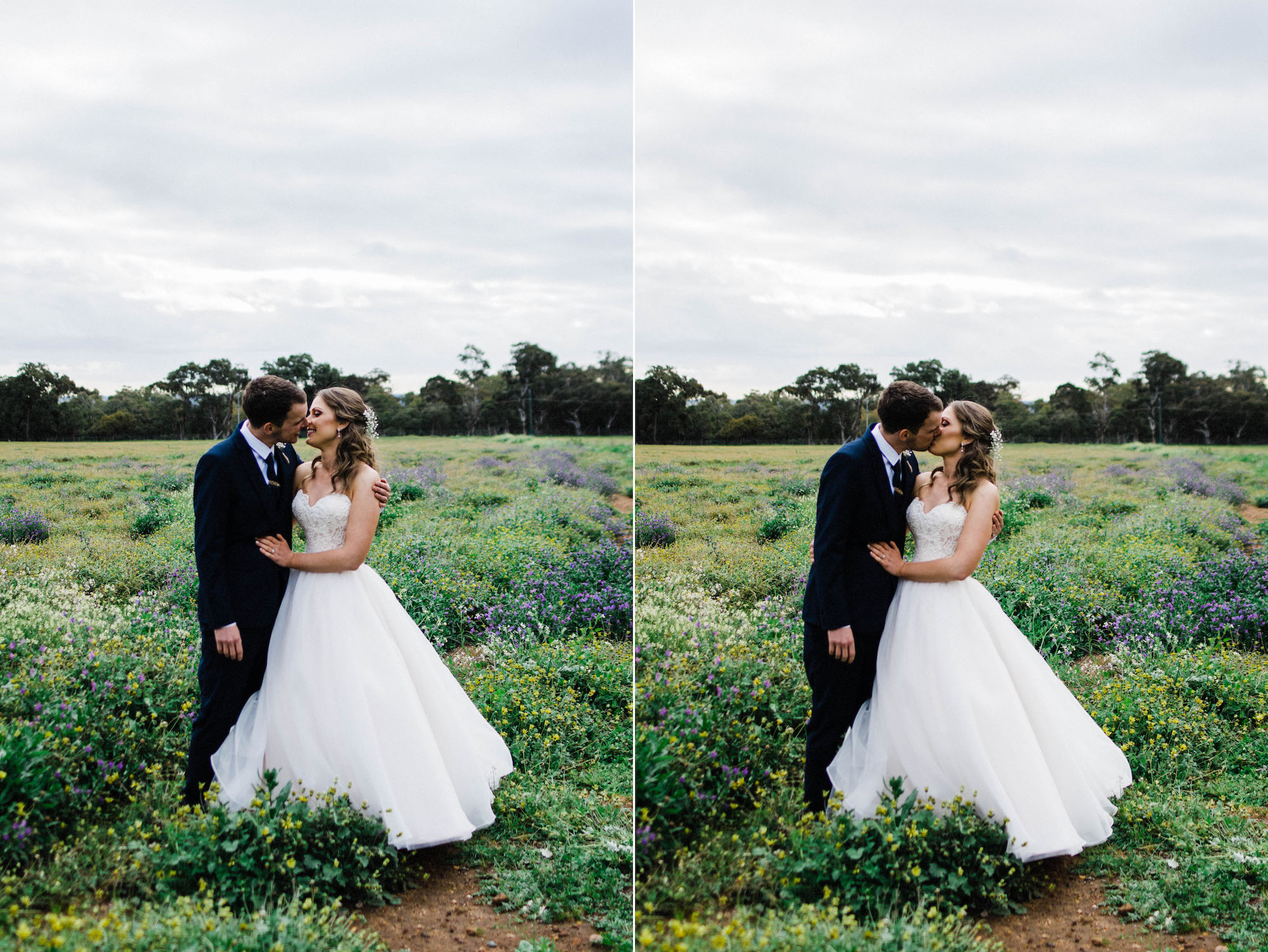 Authentic wedding portraits of the bride & groom sharing a kiss in a field of flowers in Australia's spring time.