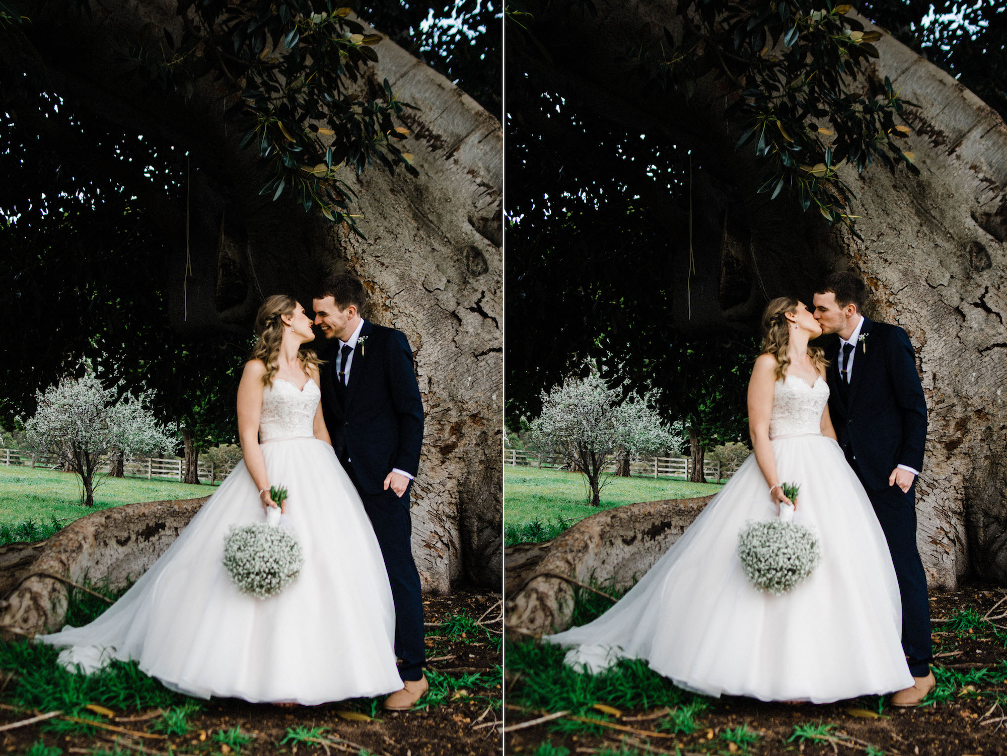 The bride & groom share a moment together under the Moreton Bay Fig Tree at Quarry Farm.