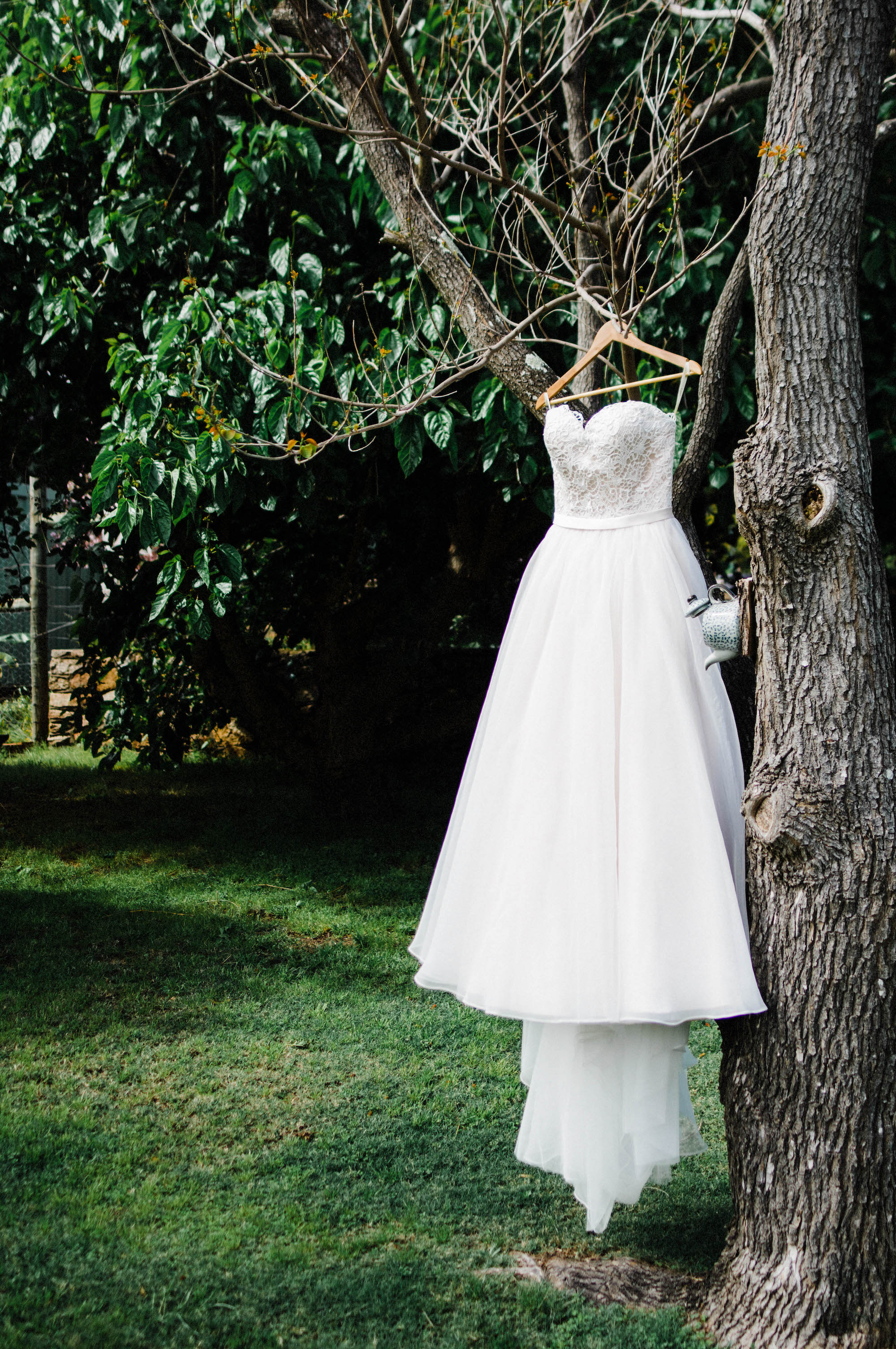 The bride's dress in her garden before she gets dressed.