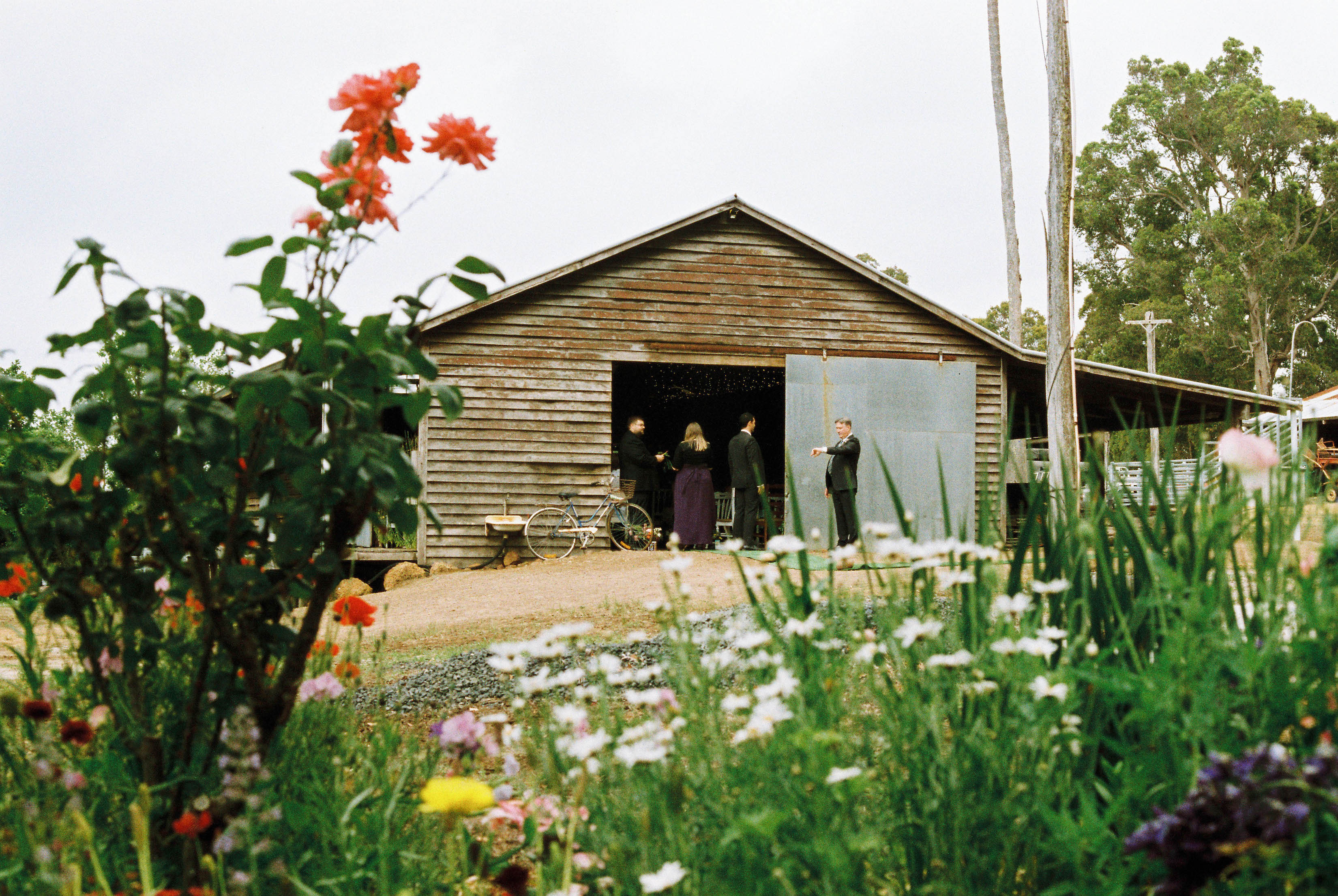 A photo of flowers and the shearing shed before a Bridgetown farm wedding