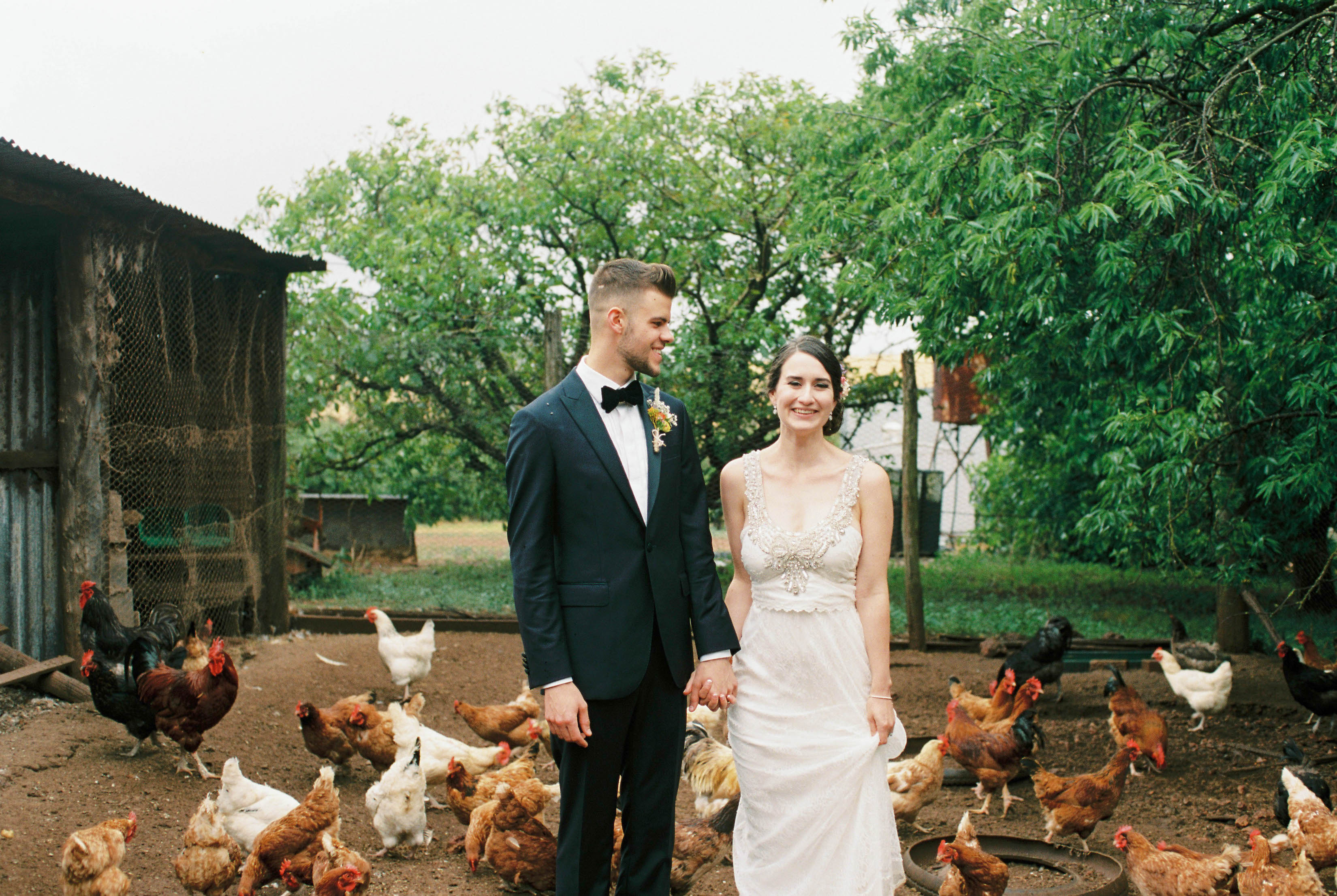Wedding photography of the bride & groom standing & laughing in a chicken pen on their family farm
