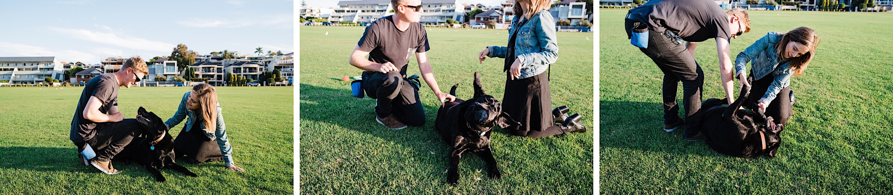 A triptych of lifestyle family portraits, featuring their dog, an adopted black labrador.
