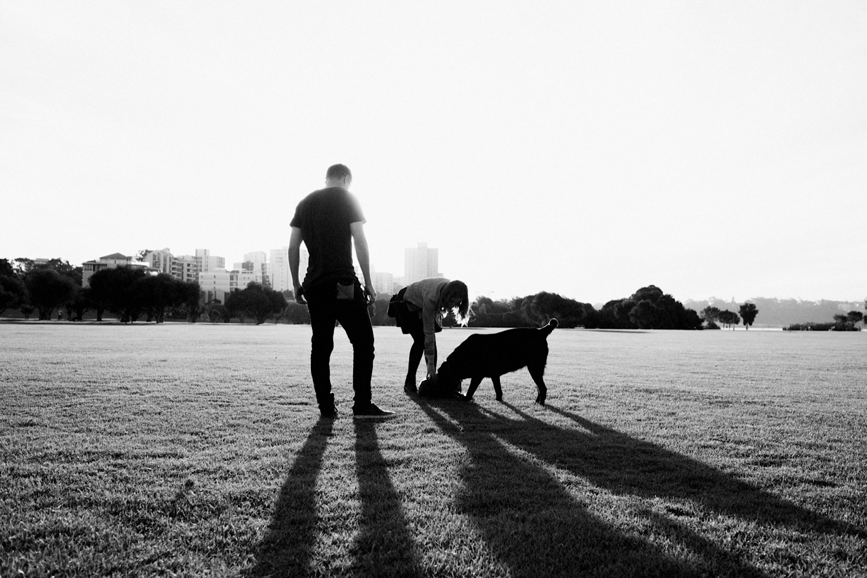 A black and white family photo of a couple and their dog at the park, with long shadows cast by all three of them.