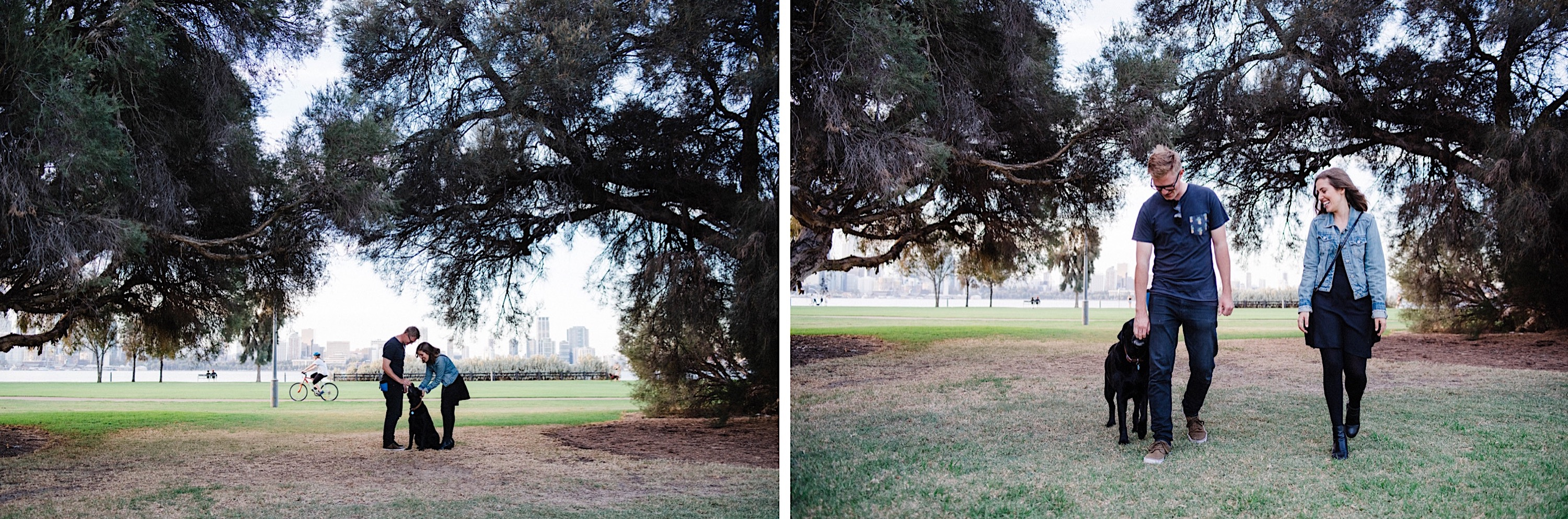 Two photos of a dog and it's owners walking underneath paperbark trees at Sir James Mitchell Park in South Perth.