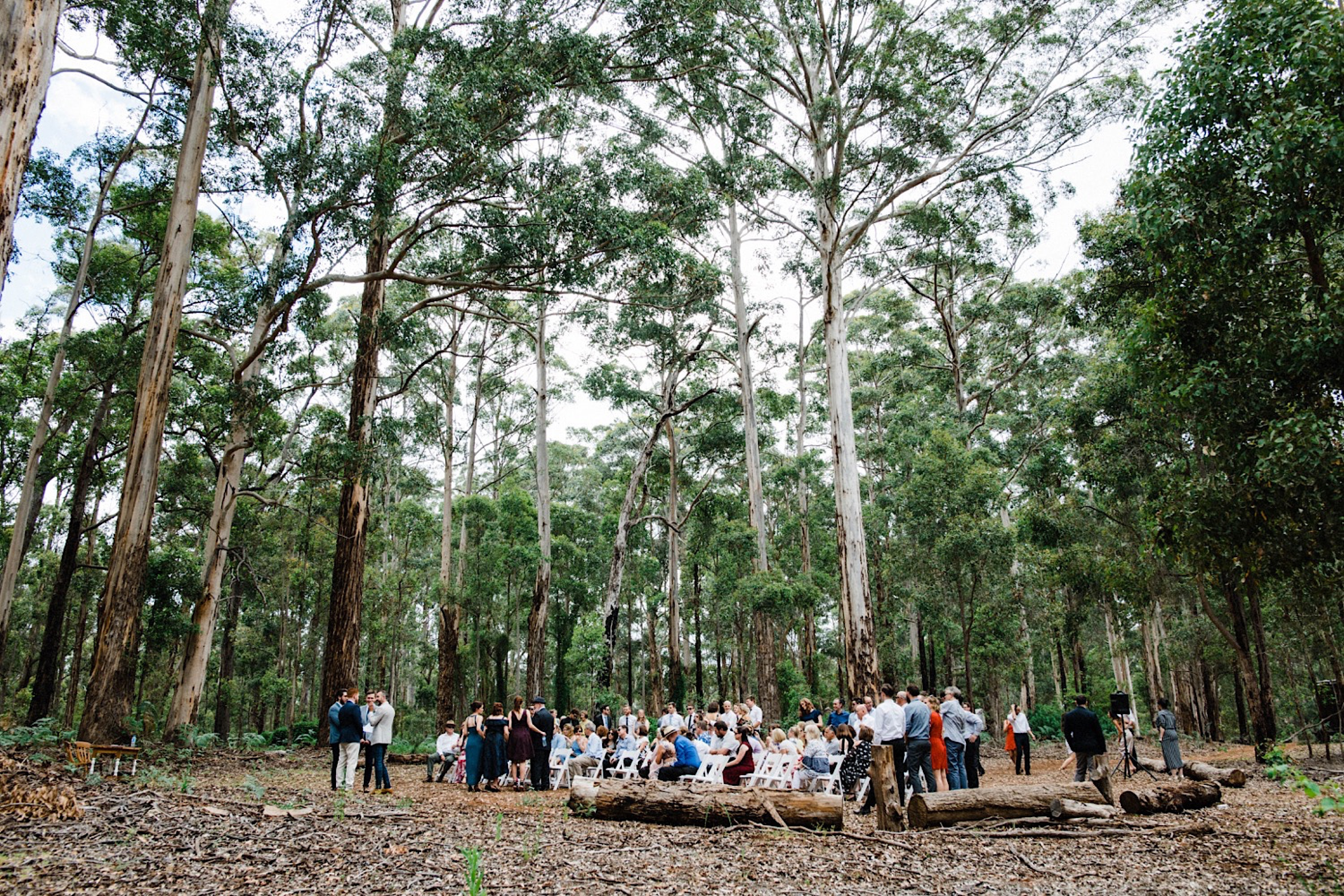 A wide photo of a Donnelly River Wedding Ceremony in the Karri Forrest.