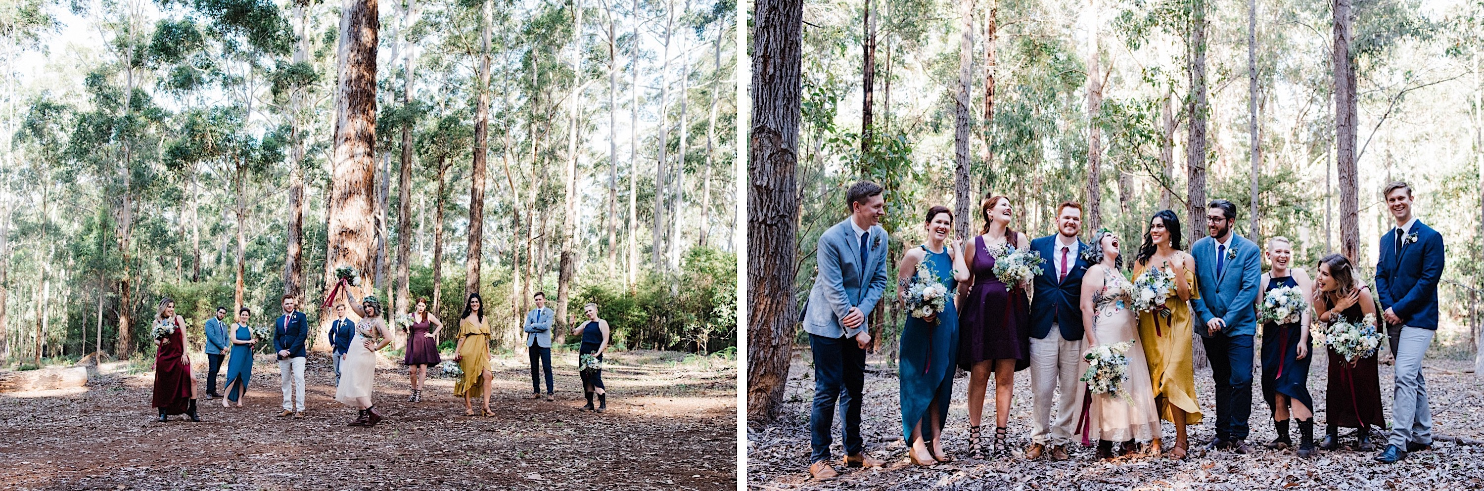 Wedding photos of the bridal party in the Karri Forest at Donnelly River Village