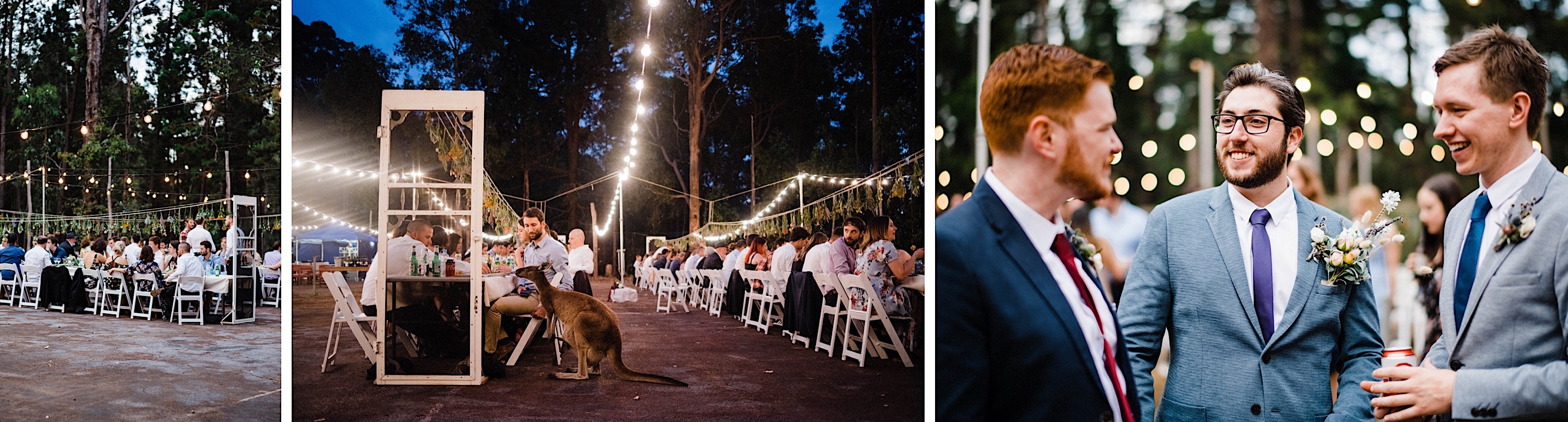 Documentary Wedding Photography of Kangaroos & Guests eating their dinner at a Donnelly River Wedding Reception.