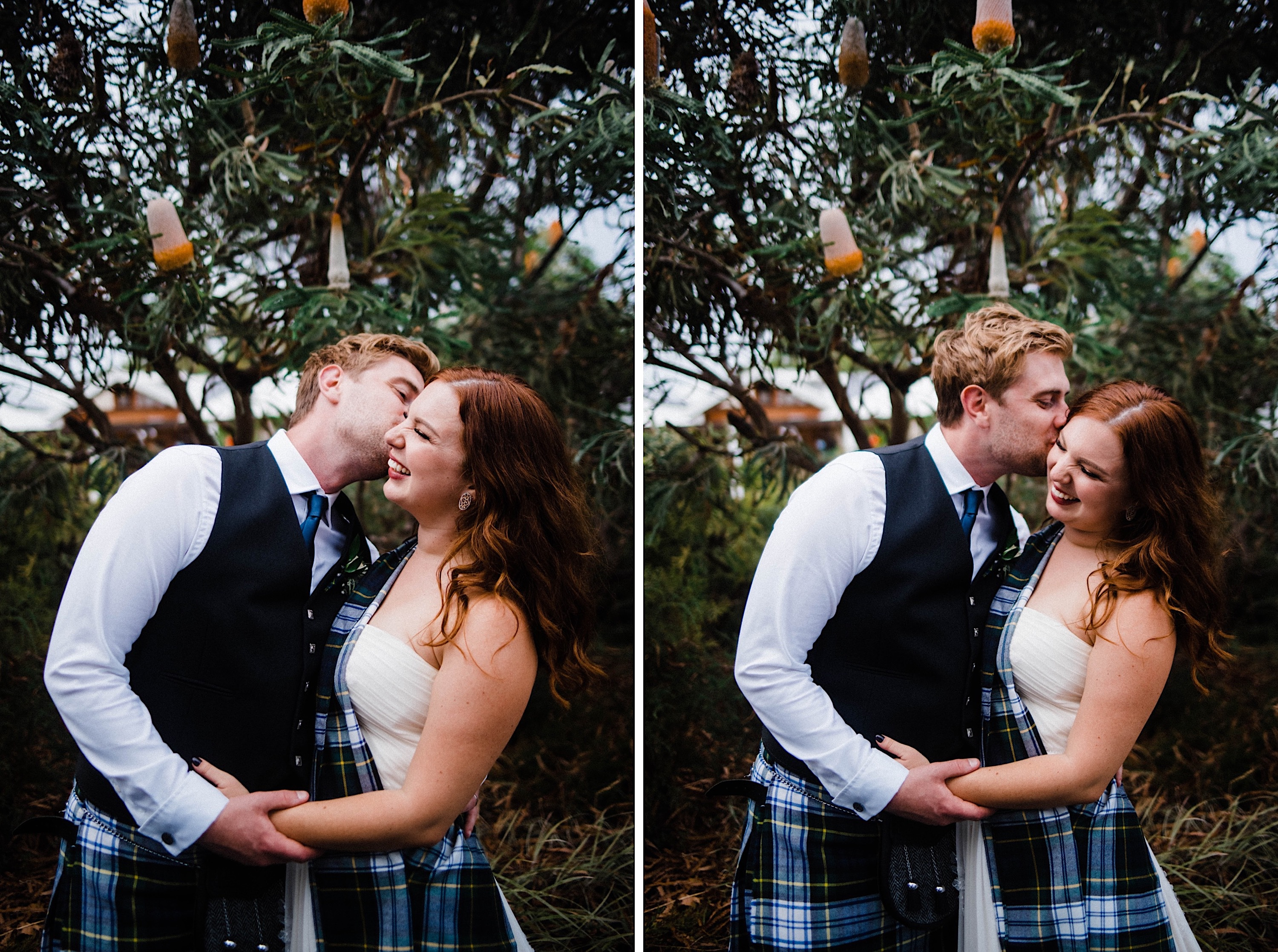 Two side-by-side wedding portaits at a Sustainable Backyard Wedding of the bride & groom kissing and laughing in front of a Banksia Tree.